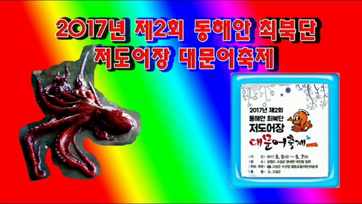 강원도 고성 동해안 최북단 저어도어장 대문어 축제