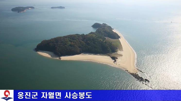 옹진군 자월면 항공영상01