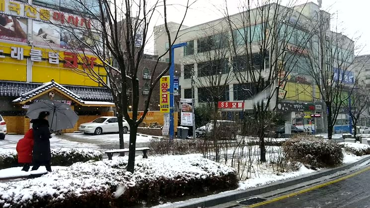 눈 오는 서구청앞 풍경