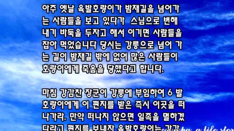 강릉 정동진 심곡 바다부채길 & 주문진 소돌해변 아들바위공원을 걷다