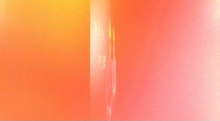 개콘 황해팀(정찬민,이수지)이 전하는 보이스피싱 피해예방 영상 메시지