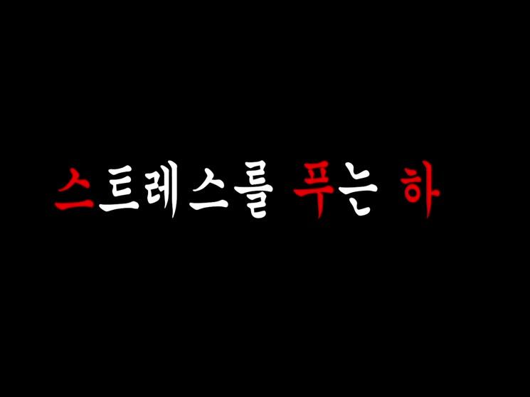 [영상왕] 스트레스 푸는 하루