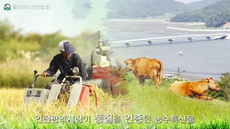 플라이마크연합회 인천케이블방송용 CF30초 최종편