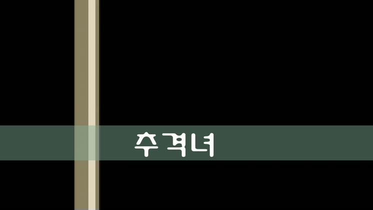2014 청소년방송 페스티벌 영상(남부초교 추격녀)