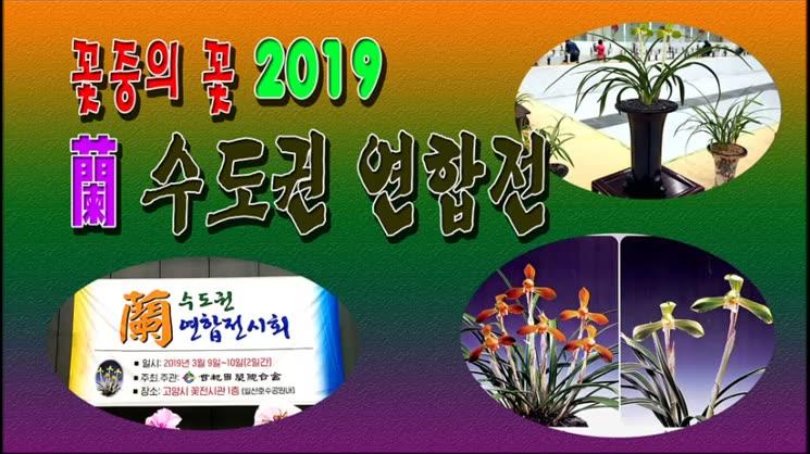 2019 수도권 蘭 연합전시회관람