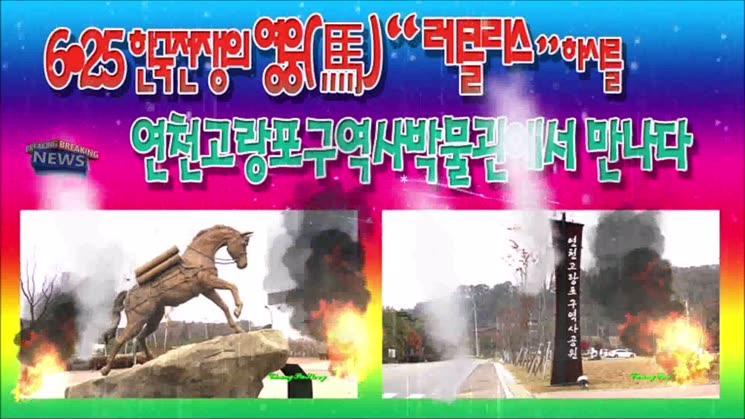 6?25 한국전쟁의 영웅(馬) 레클리스 하사...평화누리길 DMZ 탐방길에 만나다