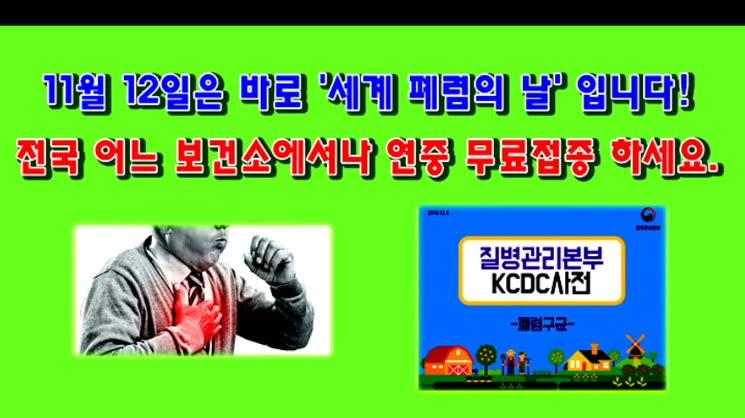 11월 12일은 '세계폐렴 예방의 날'