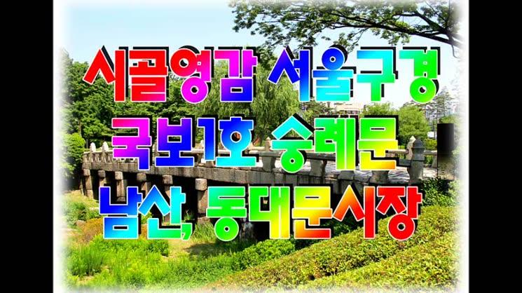시골영감 서울구경 (숭례문, 남산, 동대문시장)