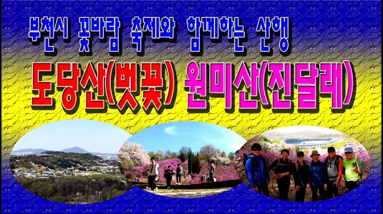 부천 꽃바람 축제따라 도당산(벗꽃) 원미산(진달래) 산행