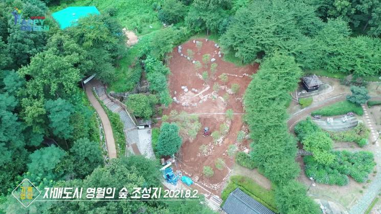 임학공원 영월의 숲 조성[기록영상]