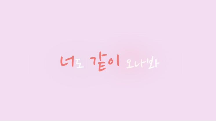 [영상왕] 폴리텍_우연히 봄
