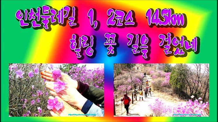 인천둘레길 1,2코스 14.5km 꽃길을 걸었네