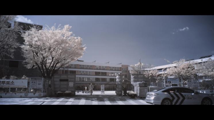 INFRARED:적외선으로 담은 세상