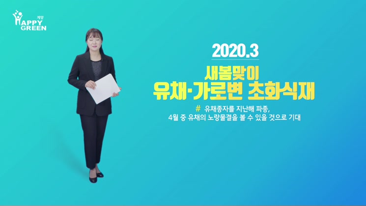 봄맞이 유채·가로변 초화식재 새 단장_[2020.3.3주]