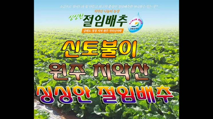 강원도 치악산 청정농지 재배