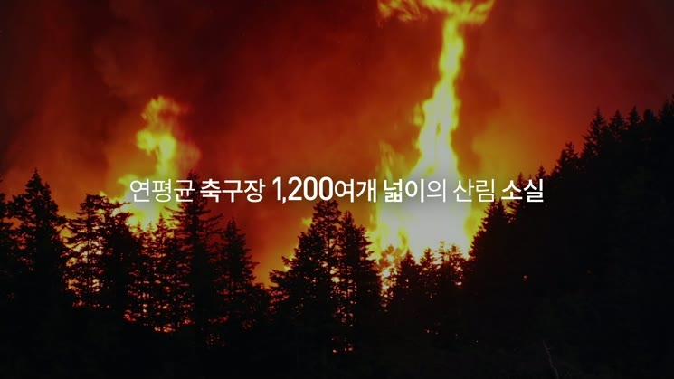 (산림청) 당신의 3초가 숲의 100년을 지킵니다